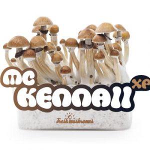 Mc Kennaii kweekset