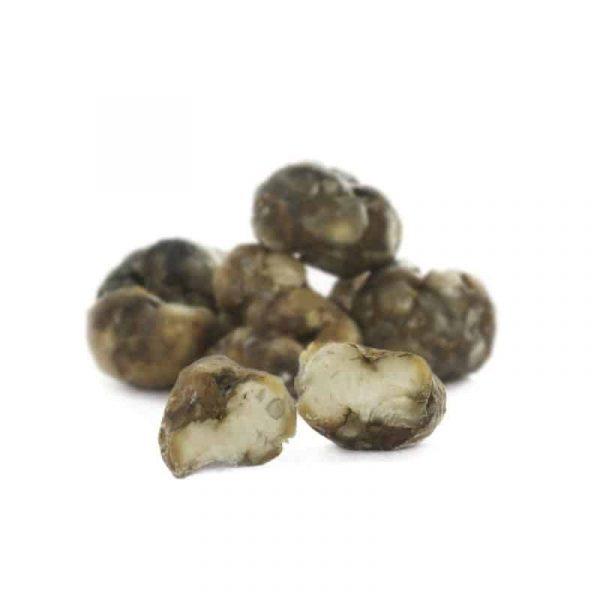 truffels atlantis 4