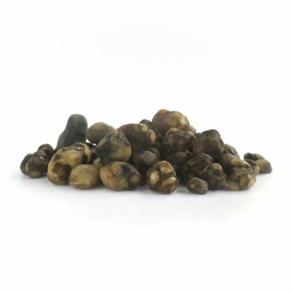 truffels mexicana 2