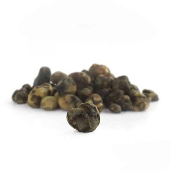 truffels mexicana 3
