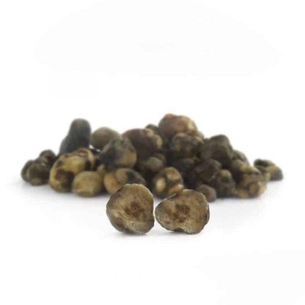 truffels mexicana 4