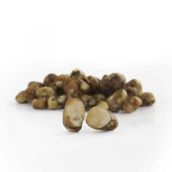truffels pajaritos 4